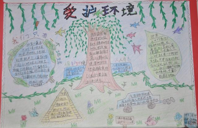 小学部五年级举行手抄报评选展示活动图片